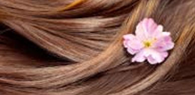Hairloss: Its various causes, treatment options and more