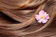 Hair Treatment in Vaishali Can End Your Hair Loss Woes!